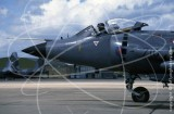 ZD608 - BAe Systems Sea Harrier FRS1 at Unknown in 1990