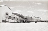 HE877 - Consolidated B-24 Liberator at Pima County in 1983