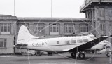 G-AJDP - de Havilland DH104 Dove at Croydon in 1953