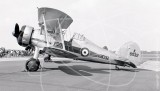 K8032 - Gloster Gladiator at White Waltham in Unknown